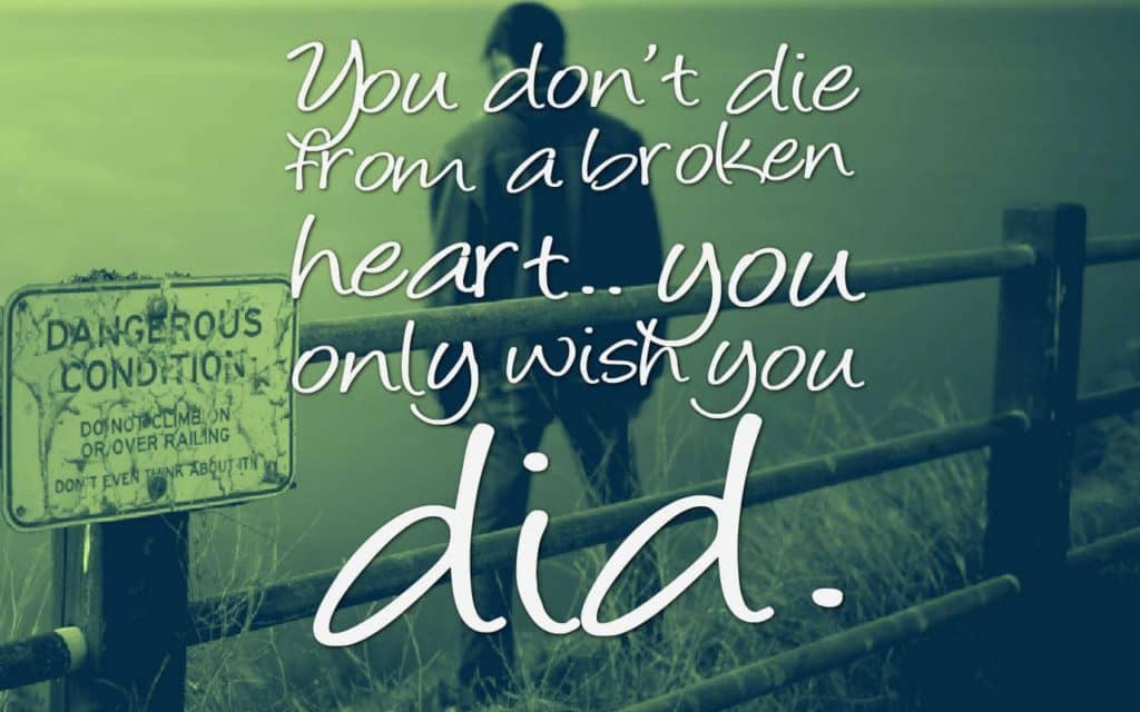 You don't die from a broken heart.. you only wish you did.